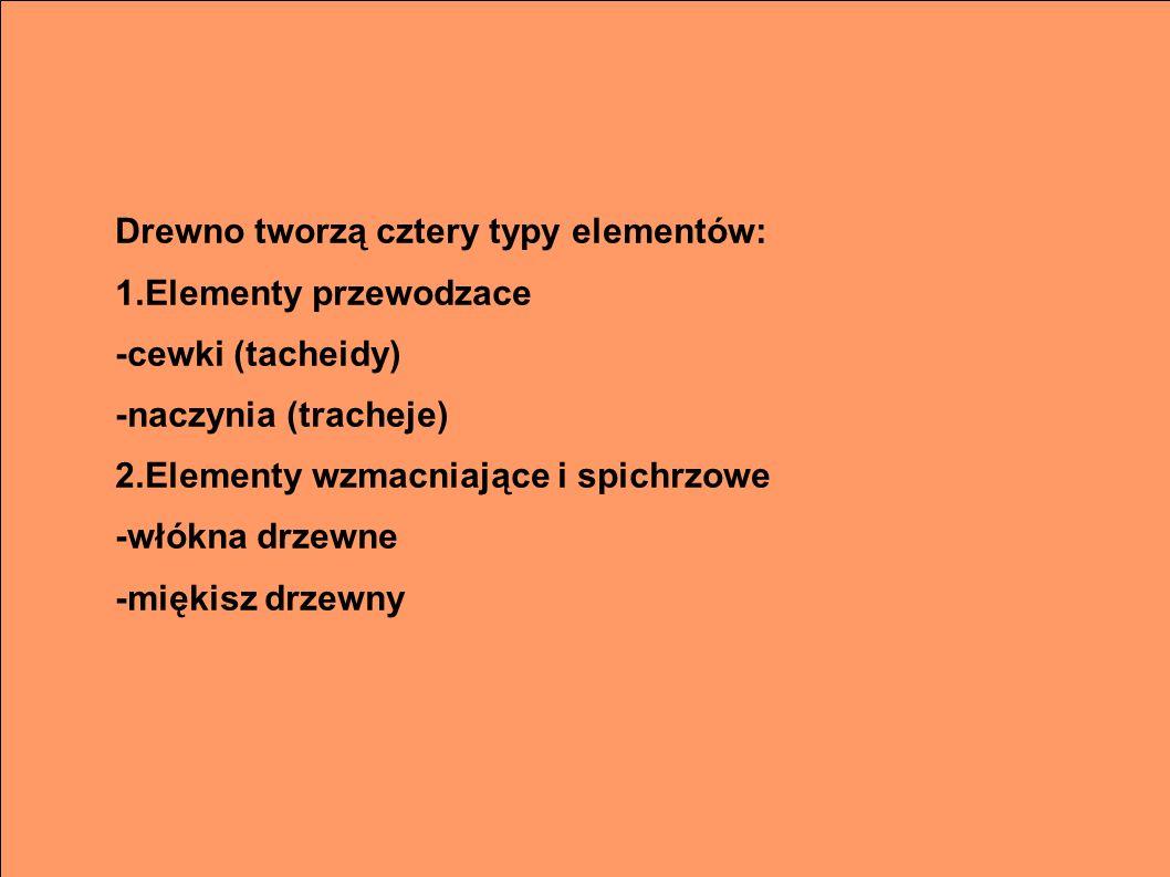 Drewno tworzą cztery typy elementów: 1.Elementy przewodzace -cewki (tacheidy) -naczynia (tracheje) 2.Elementy wzmacniające i spichrzowe -włókna drzewn