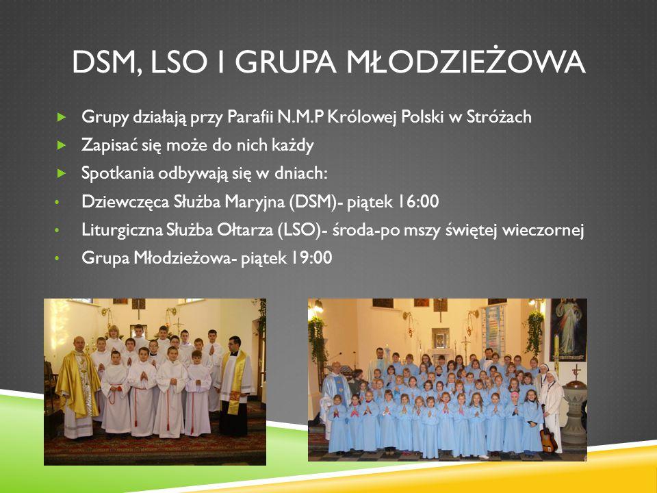 DSM, LSO I GRUPA MŁODZIEŻOWA Grupy działają przy Parafii N.M.P Królowej Polski w Stróżach Zapisać się może do nich każdy Spotkania odbywają się w dnia