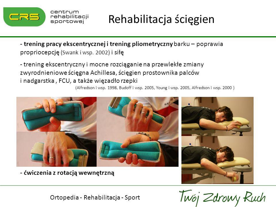 ddd Ortopedia - Rehabilitacja - Sport Rehabilitacja ścięgien - trening pracy ekscentrycznej i trening pliometryczny barku – poprawia propriocepcję (Sw