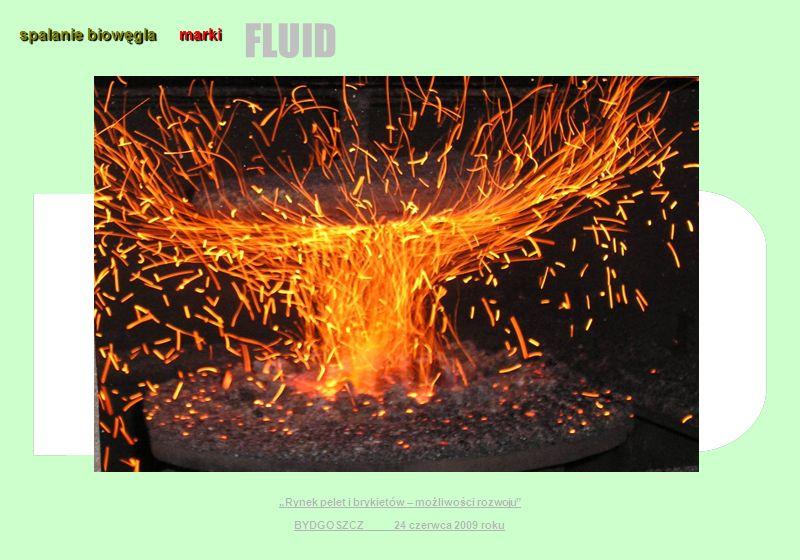 spalanie biowęgla marki FLUID Rynek pelet i brykietów – możliwości rozwoju BYDGOSZCZ 24 czerwca 2009 roku
