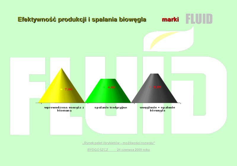 Efektywność produkcji i spalania biowęgla marki FLUID Rynek pelet i brykietów – możliwości rozwoju BYDGOSZCZ 24 czerwca 2009 roku