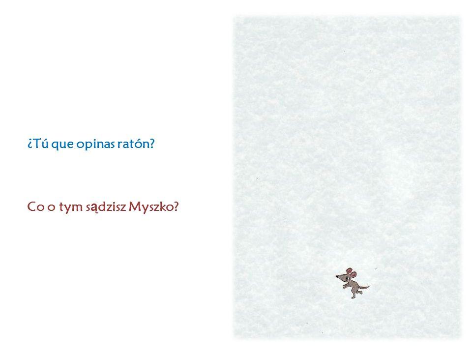¿Tú que opinas ratón Co o tym s ą dzisz Myszko
