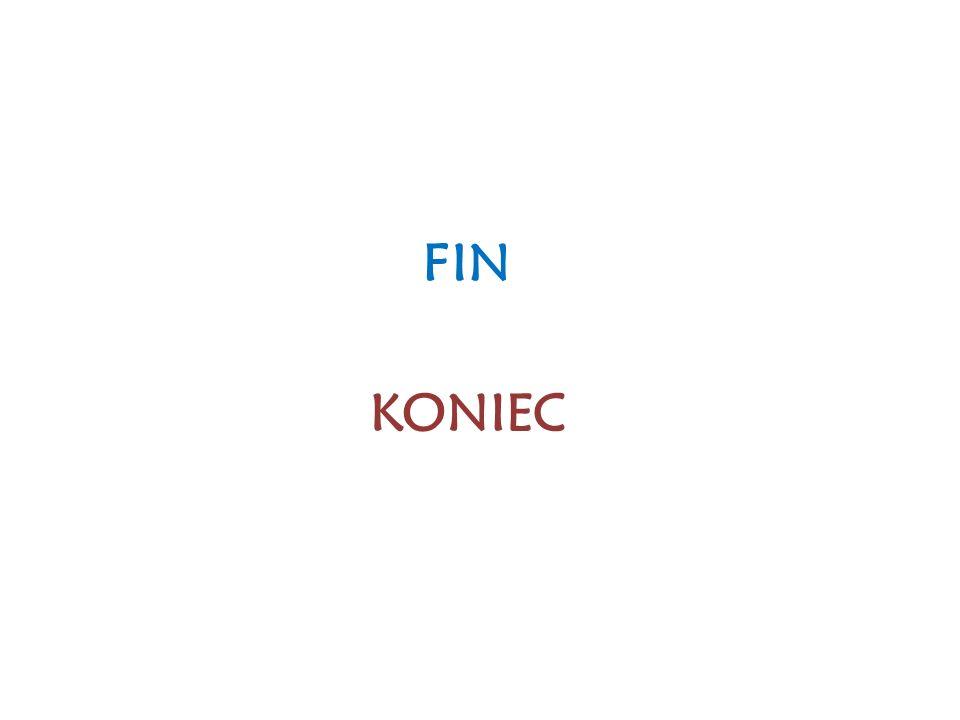 FIN KONIEC