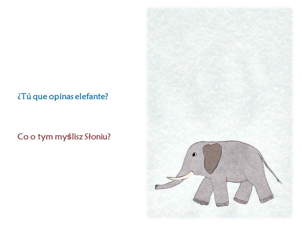 ¿Tú que opinas elefante Co o tym my ś lisz Słoniu