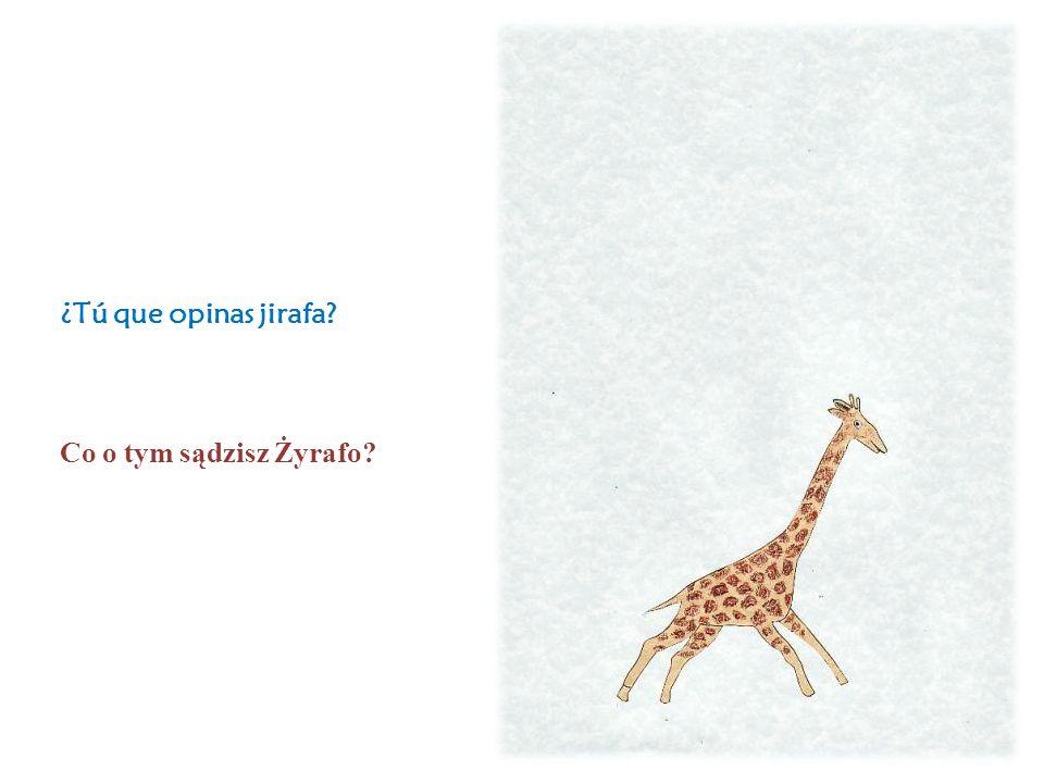 ¿Tú que opinas jirafa Co o tym sądzisz Żyrafo