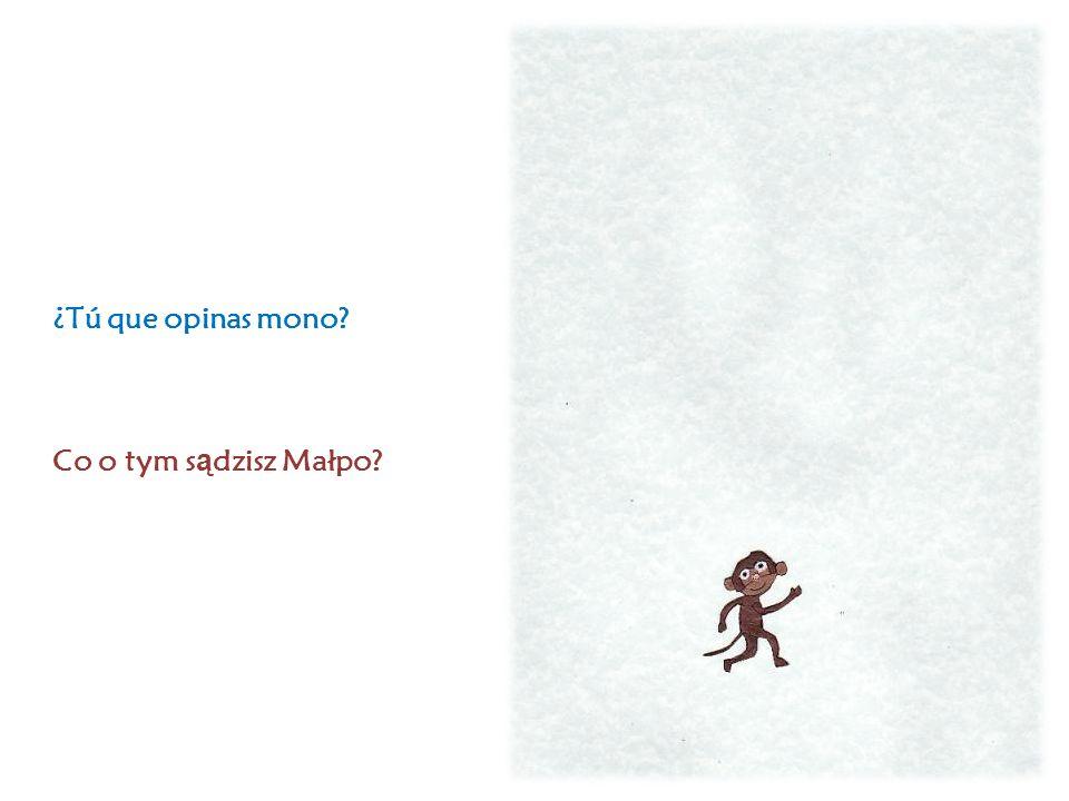 ¿Tú que opinas mono Co o tym s ą dzisz Małpo