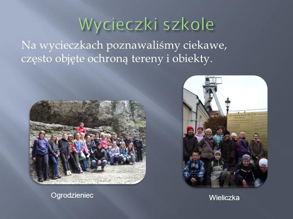 Ogrodzieniec Wieliczka Na wycieczkach poznawaliśmy ciekawe, często objęte ochroną tereny i obiekty.