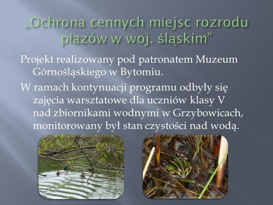 Projekt realizowany pod patronatem Muzeum Górnośląskiego w Bytomiu. W ramach kontynuacji programu odbyły się zajęcia warsztatowe dla uczniów klasy V n