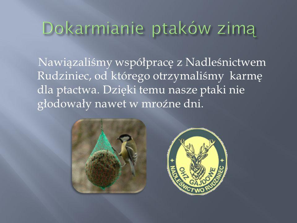 Nawiązaliśmy współpracę z Nadleśnictwem Rudziniec, od którego otrzymaliśmy karmę dla ptactwa. Dzięki temu nasze ptaki nie głodowały nawet w mroźne dni