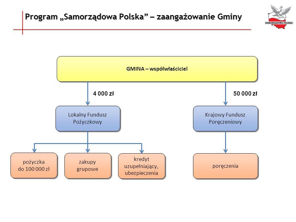 Program Samorządowa Polska – zaangażowanie Gminy GMINA – współwłaściciel Lokalny Fundusz Pożyczkowy Krajowy Fundusz Poręczeniowy pożyczka do 100 000 z