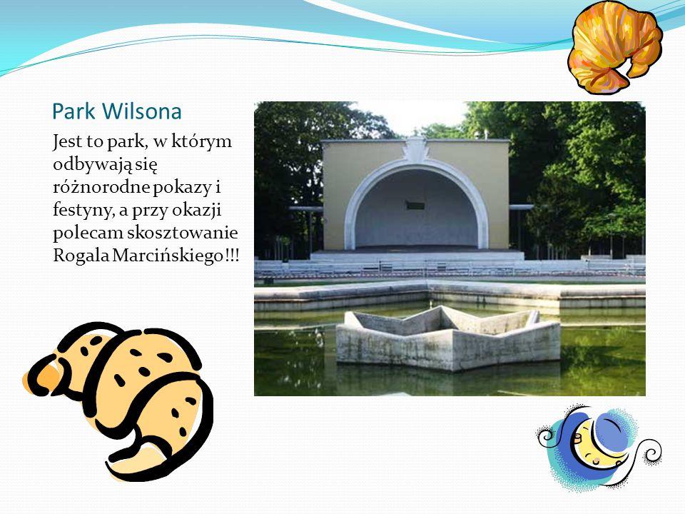 Park Wilsona Jest to park, w którym odbywają się różnorodne pokazy i festyny, a przy okazji polecam skosztowanie Rogala Marcińskiego!!!