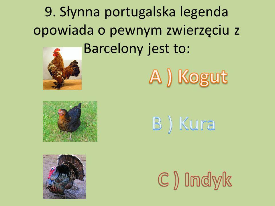 9. Słynna portugalska legenda opowiada o pewnym zwierzęciu z Barcelony jest to: