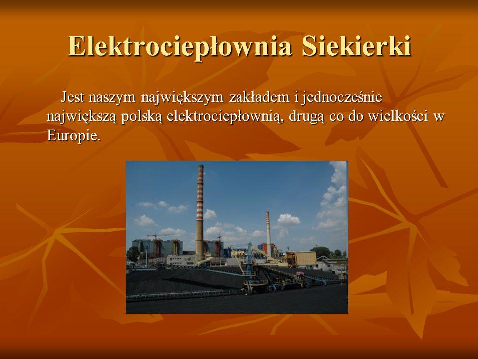Elektrownie, w których wytwarzana jest energia elektryczna : Elektrownie, w których wytwarzana jest energia elektryczna :