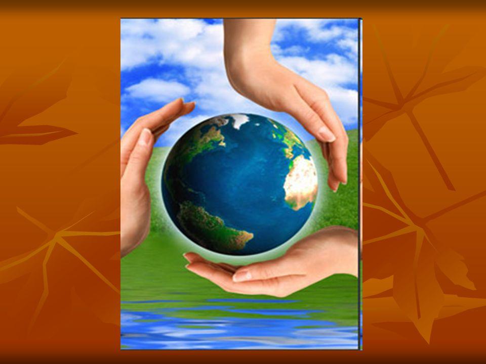 Z energii docierającej do granic atmosfery Ziemi około 28% zostaje odbite i rozproszone, reszta jest zaabsorbowana przez biosferę.