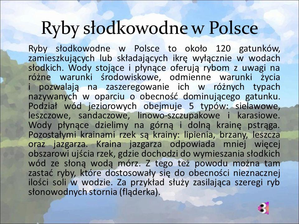 Ryby słodkowodne w Polsce Ryby słodkowodne w Polsce to około 120 gatunków, zamieszkujących lub składających ikrę wyłącznie w wodach słodkich.