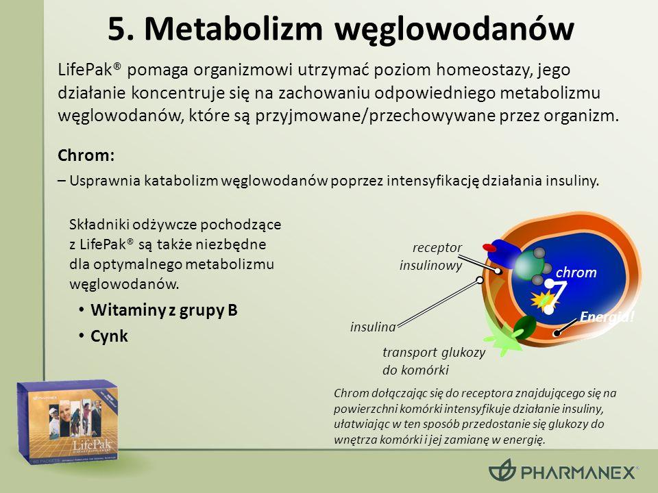 5. Metabolizm węglowodanów LifePak® pomaga organizmowi utrzymać poziom homeostazy, jego działanie koncentruje się na zachowaniu odpowiedniego metaboli