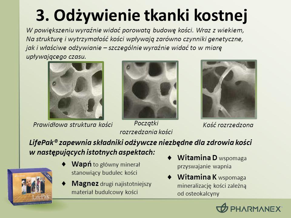 3. Odżywienie tkanki kostnej Prawidłowa struktura kości Początki rozrzedzania kości Kość rozrzedzona Wapń to główny minerał stanowiący budulec kości M