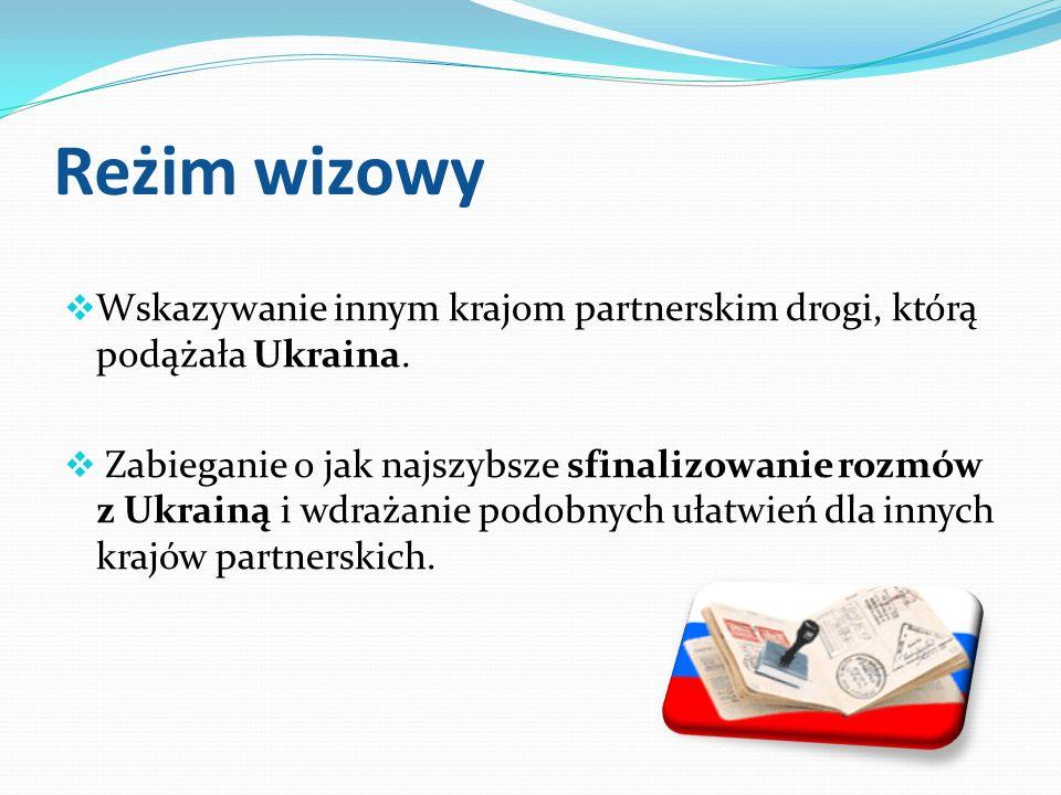 Reżim wizowy Wskazywanie innym krajom partnerskim drogi, którą podążała Ukraina. Zabieganie o jak najszybsze sfinalizowanie rozmów z Ukrainą i wdrażan
