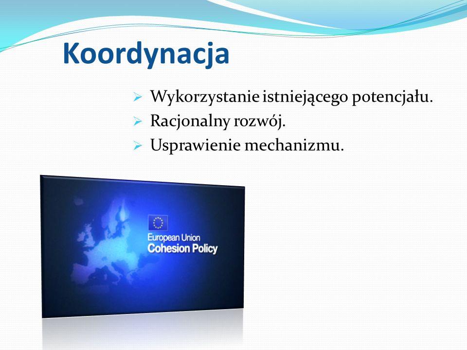 Koordynacja Wykorzystanie istniejącego potencjału. Racjonalny rozwój. Usprawienie mechanizmu.