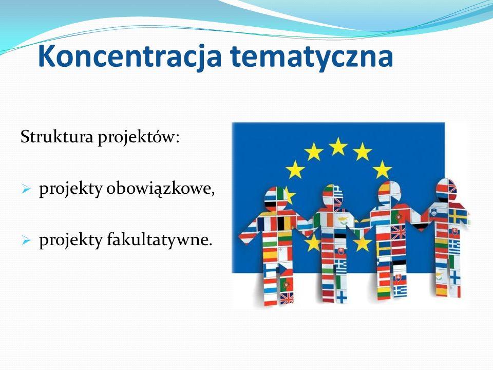 Koncentracja tematyczna Struktura projektów: projekty obowiązkowe, projekty fakultatywne.