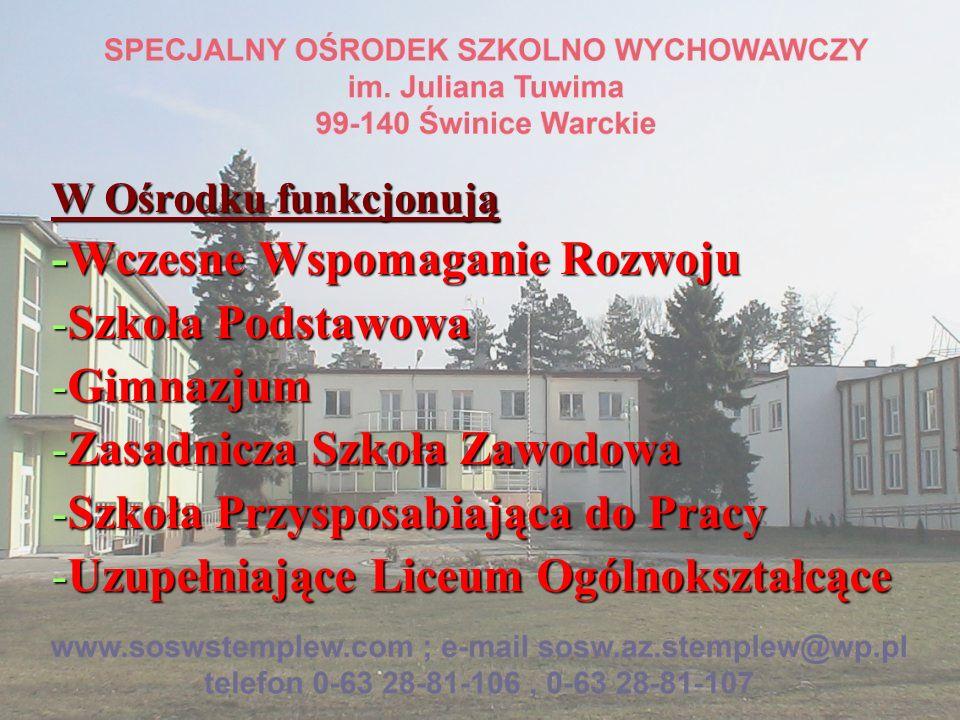 W Ośrodku funkcjonują -Wczesne Wspomaganie Rozwoju -Szkoła Podstawowa -Gimnazjum -Zasadnicza Szkoła Zawodowa -Szkoła Przysposabiająca do Pracy -Uzupeł