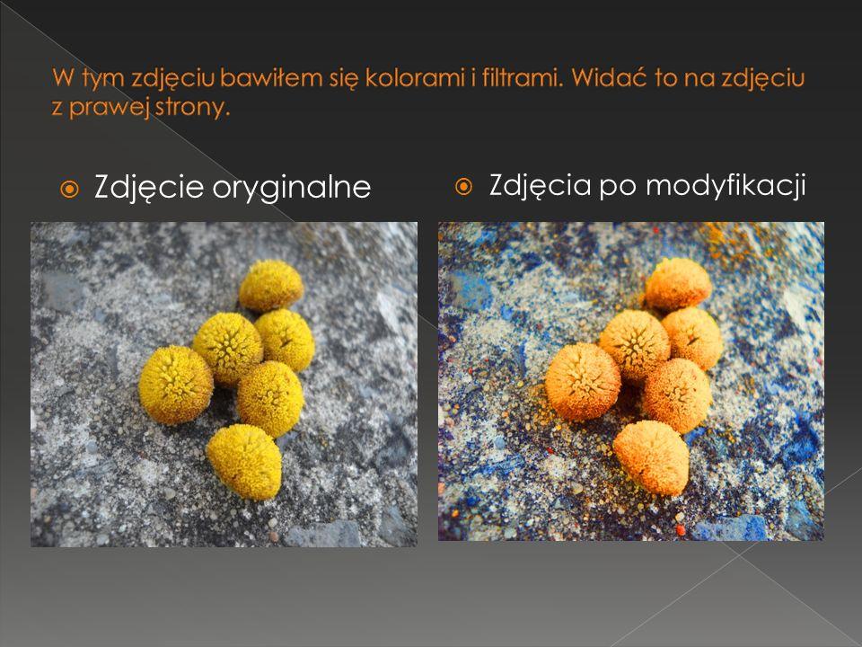 Zdjęcie oryginalne Zdjęcia po modyfikacji