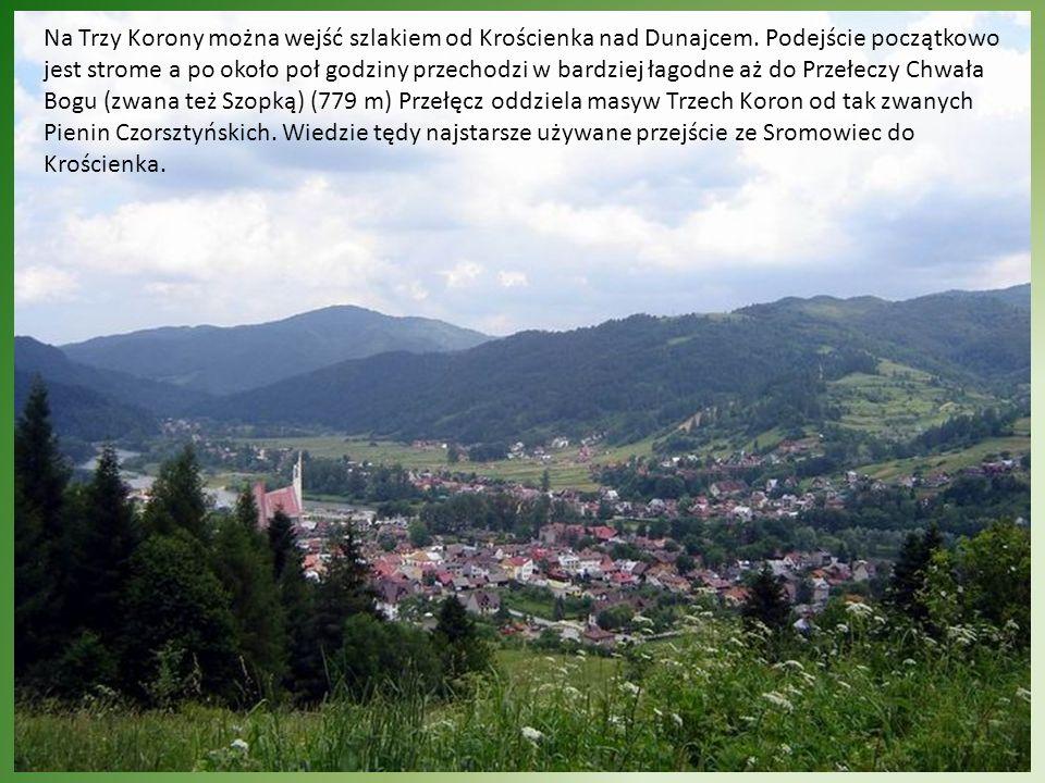 Widok na Słowację ze szczytu Sokolicy