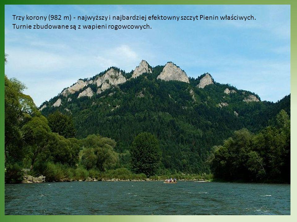 Po Prawej stronie Trzech Koron widok na Łysinę (790 m) Ten skalisty wierzchołek jest oddzielony od Trzech Koron przełęczą Wyżni Łazek (695 m).