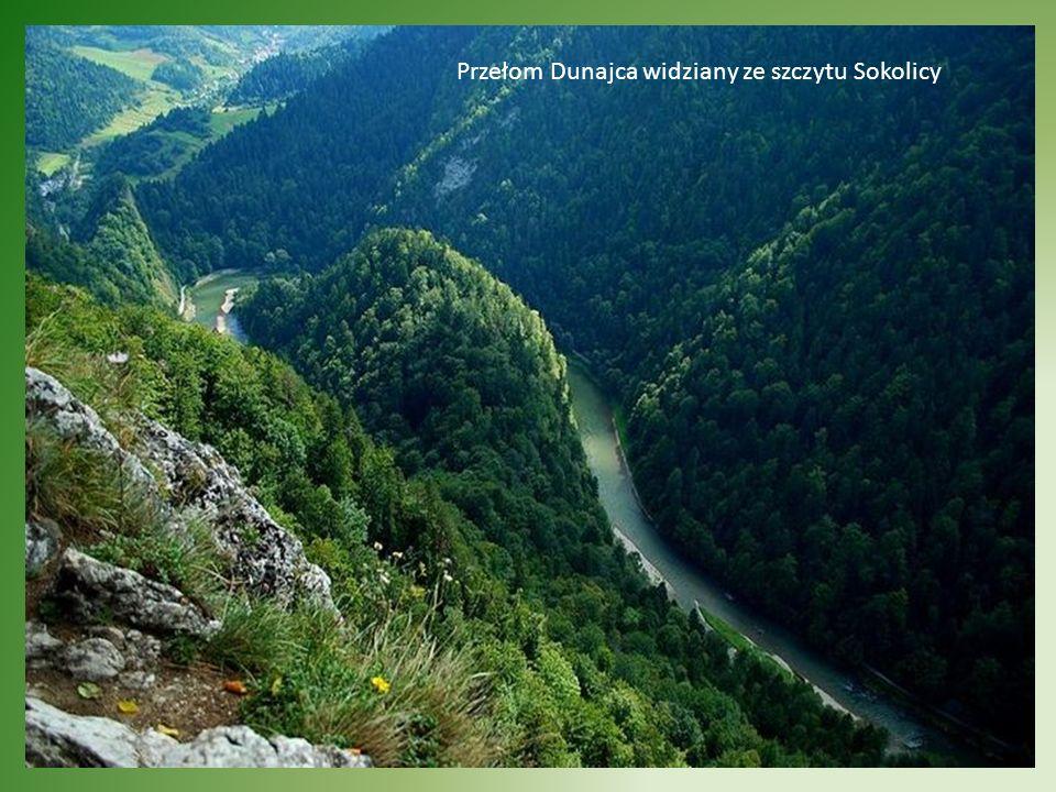 Atrakcją turystyczną na skalę europejską jest spływ tratwami Przełomem Dunajca.