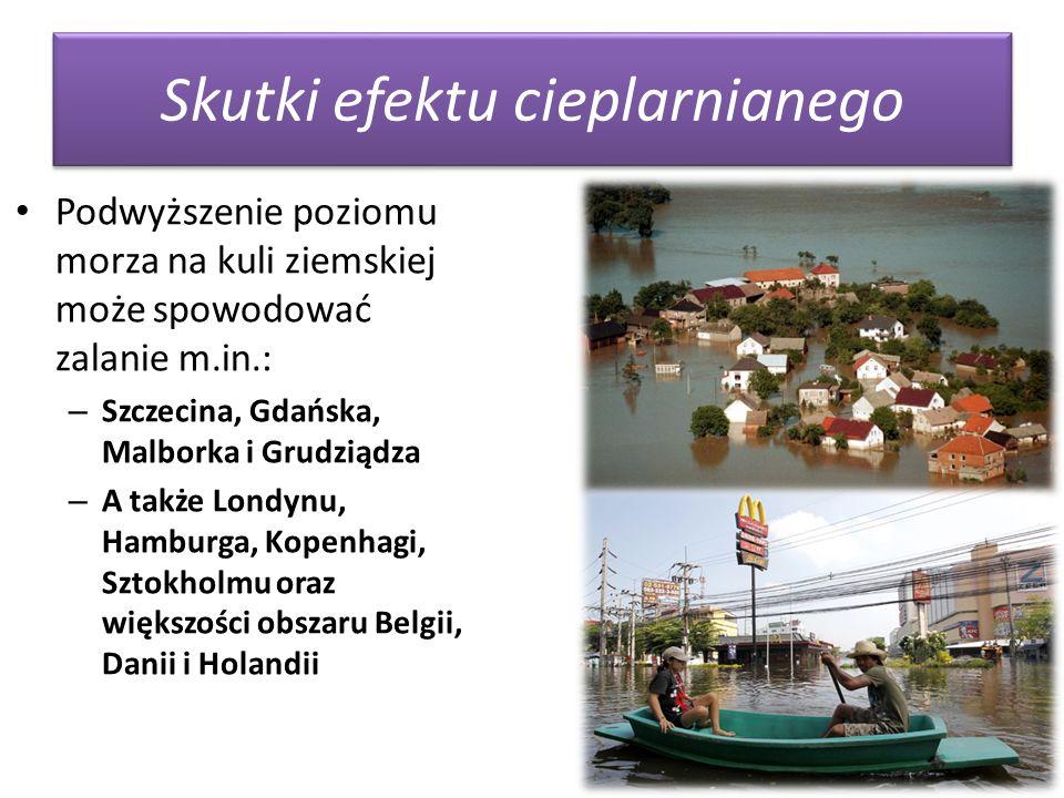 Skutki efektu cieplarnianego Podwyższenie poziomu morza na kuli ziemskiej może spowodować zalanie m.in.: – Szczecina, Gdańska, Malborka i Grudziądza –