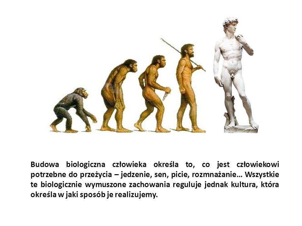 Budowa biologiczna człowieka określa to, co jest człowiekowi potrzebne do przeżycia – jedzenie, sen, picie, rozmnażanie… Wszystkie te biologicznie wym