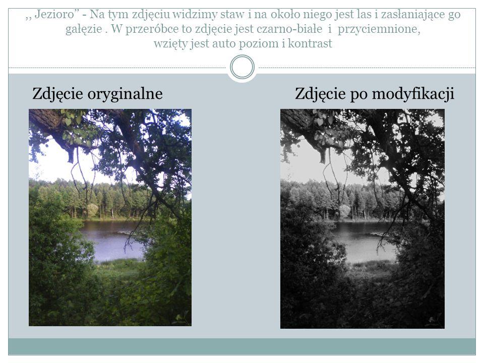,, Jezioro - Na tym zdjęciu widzimy staw i na około niego jest las i zasłaniające go gałęzie. W przeróbce to zdjęcie jest czarno-białe i przyciemnione