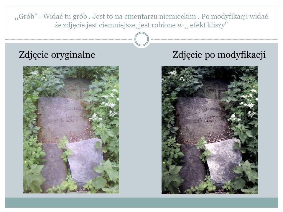 ,,Grób - Widać tu grób. Jest to na cmentarzu niemieckim. Po modyfikacji widać że zdjęcie jest ciemniejsze, jest robione w,, efekt kliszy'' Zdjęcie ory