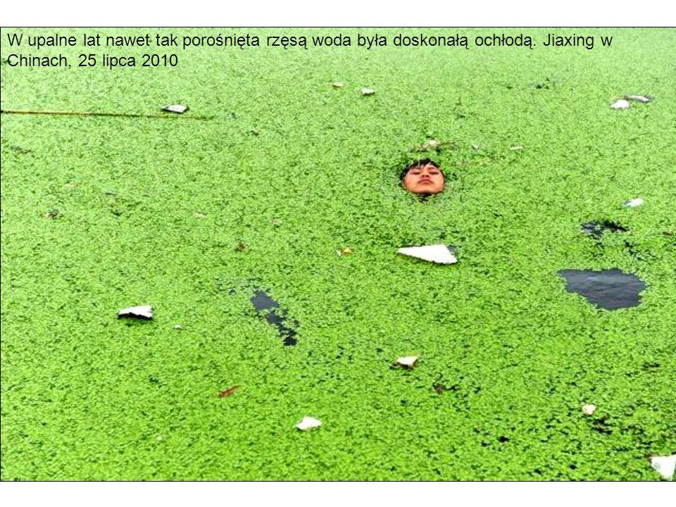 W upalne lat nawet tak porośnięta rzęsą woda była doskonałą ochłodą. Jiaxing w Chinach, 25 lipca 2010