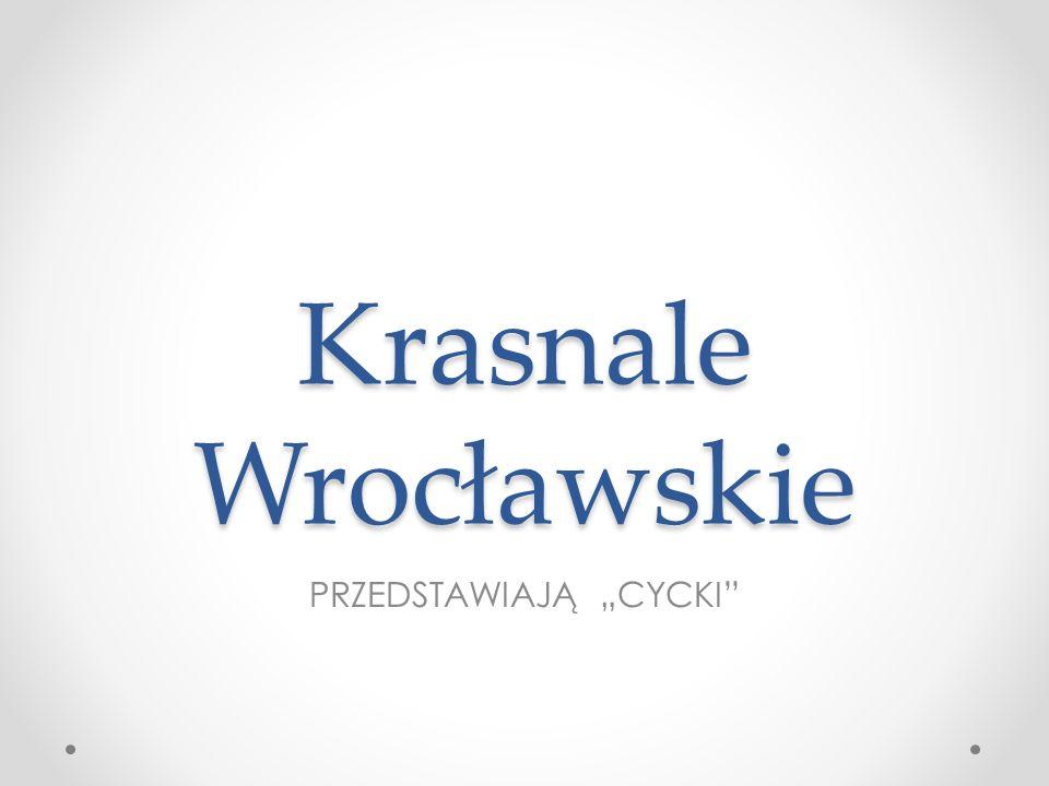 Krasnale Wrocławskie PRZEDSTAWIAJĄ CYCKI
