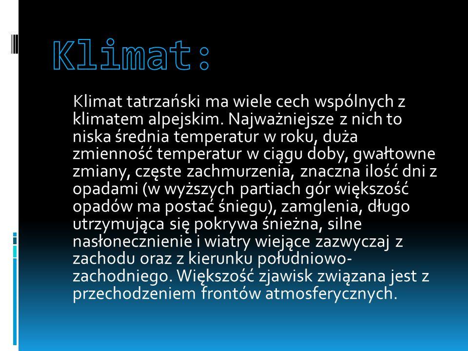 Klimat tatrzański ma wiele cech wspólnych z klimatem alpejskim.