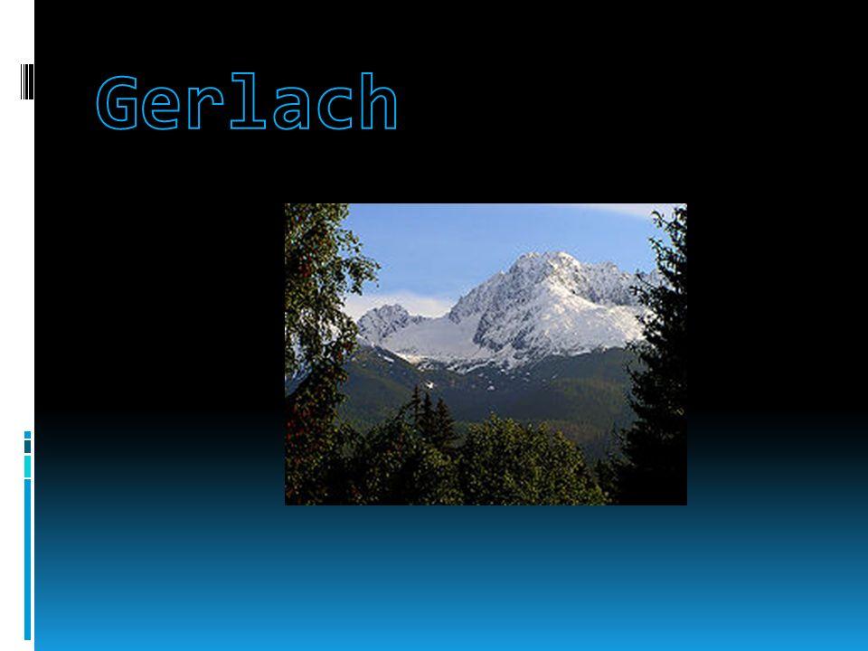 W Tatrach stwierdzono występowanie około 1300 gatunków roślin naczyniowych, przy czym dla około 200 gatunków Tatry są jedynym miejscem ich występowania w Polsce.