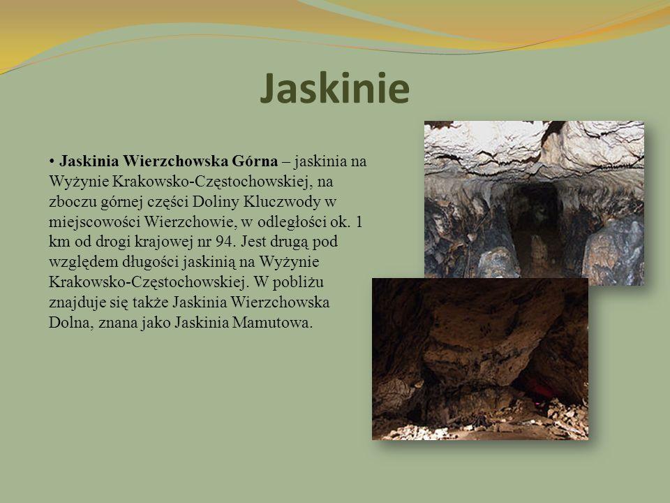 Jaskinie Jaskinia Wierzchowska Górna – jaskinia na Wyżynie Krakowsko-Częstochowskiej, na zboczu górnej części Doliny Kluczwody w miejscowości Wierzcho