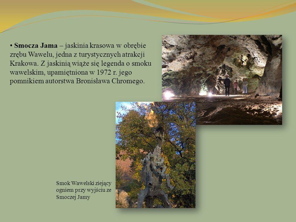 Smocza Jama – jaskinia krasowa w obrębie zrębu Wawelu, jedna z turystycznych atrakcji Krakowa. Z jaskinią wiąże się legenda o smoku wawelskim, upamięt