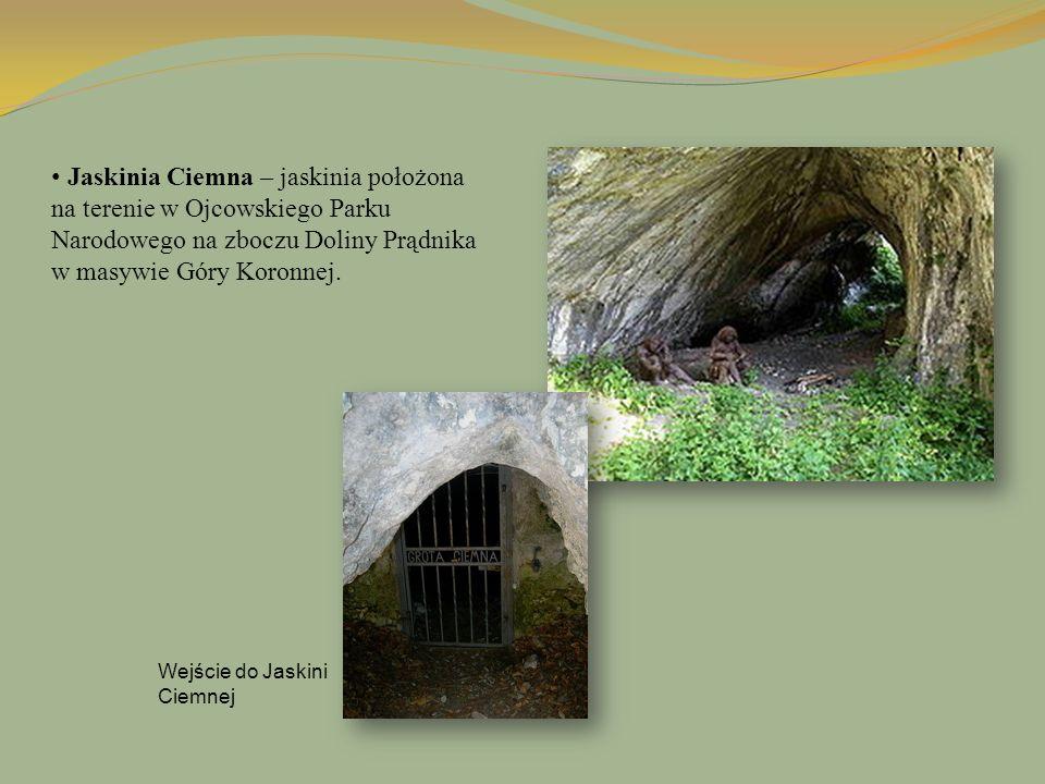 Jaskinia Ciemna – jaskinia położona na terenie w Ojcowskiego Parku Narodowego na zboczu Doliny Prądnika w masywie Góry Koronnej. Wejście do Jaskini Ci