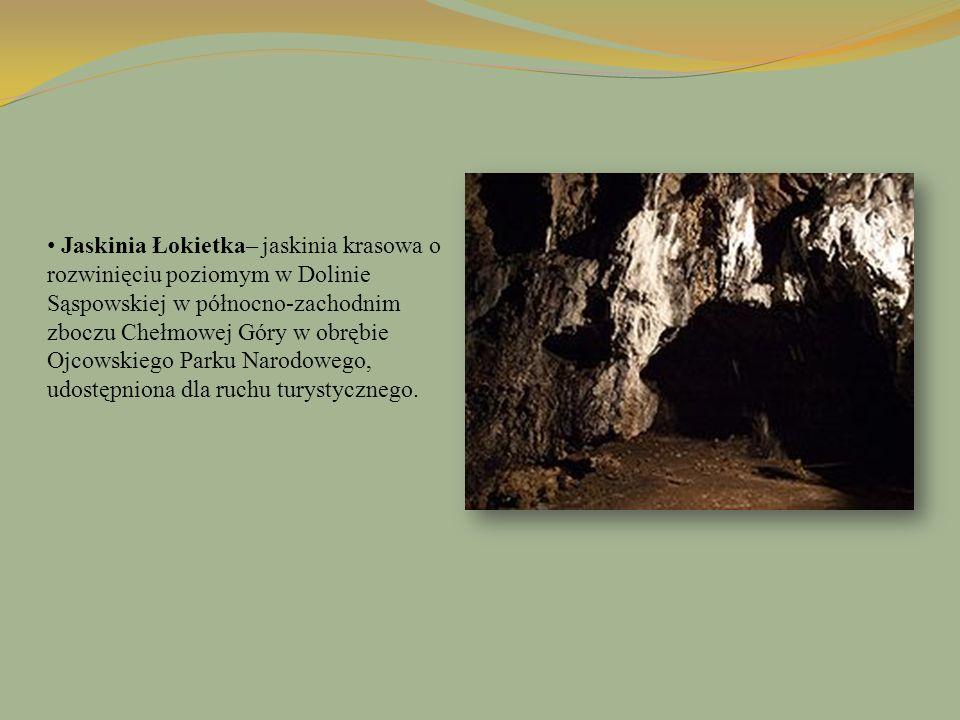 Jaskinia Łokietka– jaskinia krasowa o rozwinięciu poziomym w Dolinie Sąspowskiej w północno-zachodnim zboczu Chełmowej Góry w obrębie Ojcowskiego Park