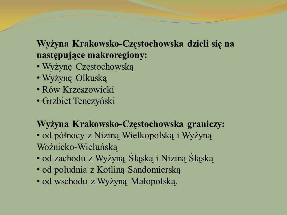Wyżyna Krakowsko-Częstochowska dzieli się na następujące makroregiony: Wyżynę Częstochowską Wyżynę Olkuską Rów Krzeszowicki Grzbiet Tenczyński Wyżyna