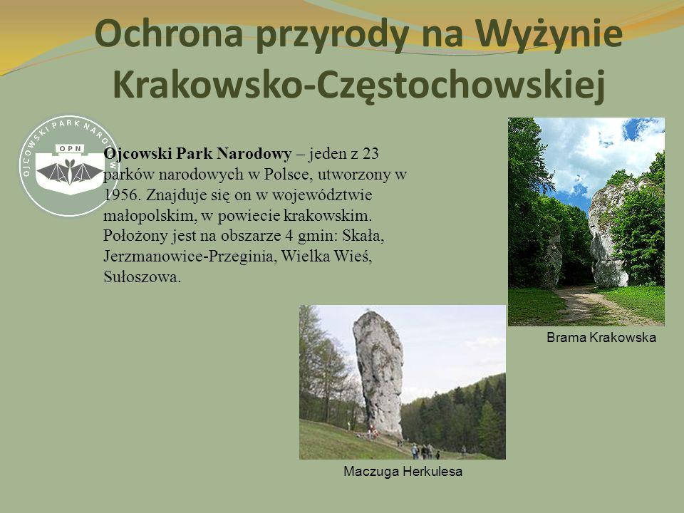 Ochrona przyrody na Wyżynie Krakowsko-Częstochowskiej Ojcowski Park Narodowy – jeden z 23 parków narodowych w Polsce, utworzony w 1956. Znajduje się o