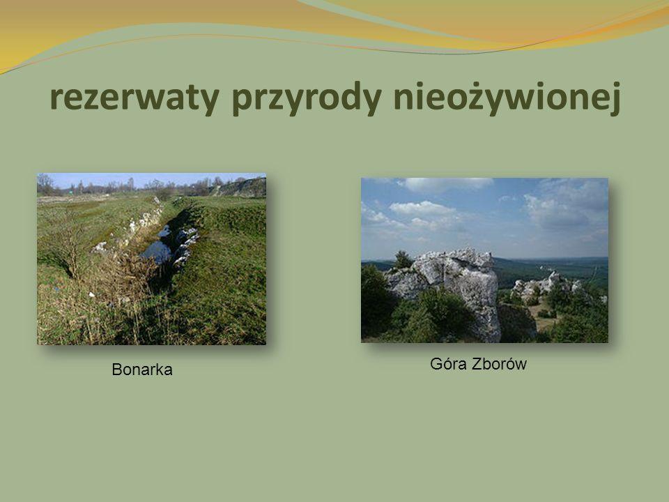 rezerwaty przyrody nieożywionej Bonarka Góra Zborów