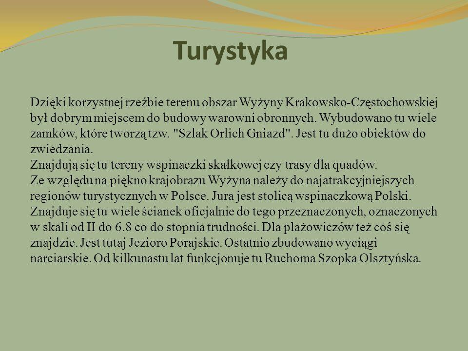 Turystyka Dzięki korzystnej rzeźbie terenu obszar Wyżyny Krakowsko-Częstochowskiej był dobrym miejscem do budowy warowni obronnych. Wybudowano tu wiel