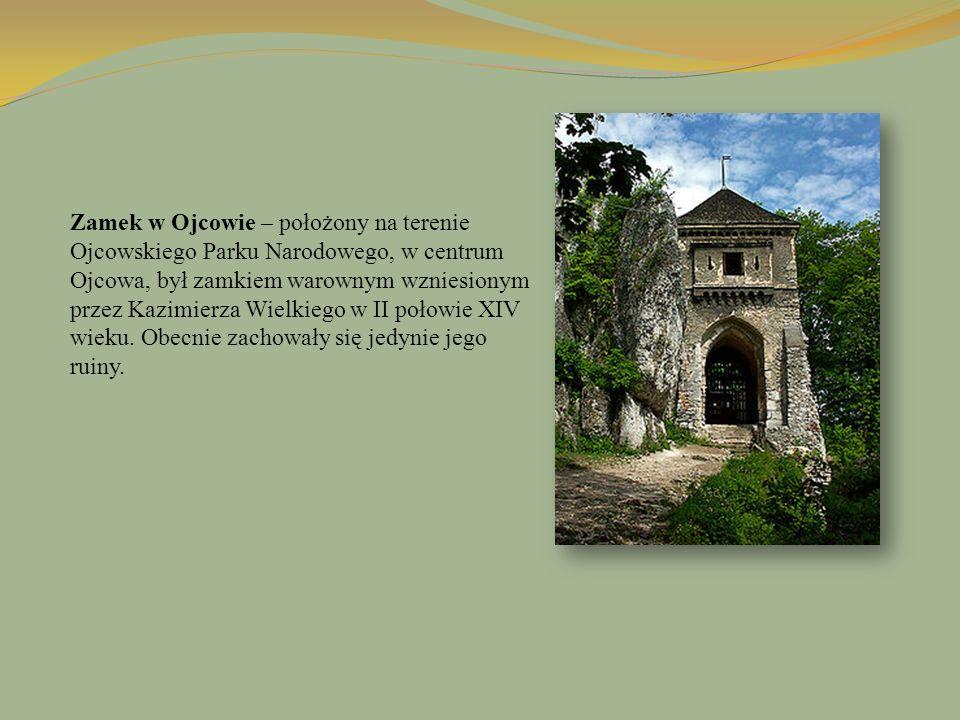 Zamek w Ojcowie – położony na terenie Ojcowskiego Parku Narodowego, w centrum Ojcowa, był zamkiem warownym wzniesionym przez Kazimierza Wielkiego w II