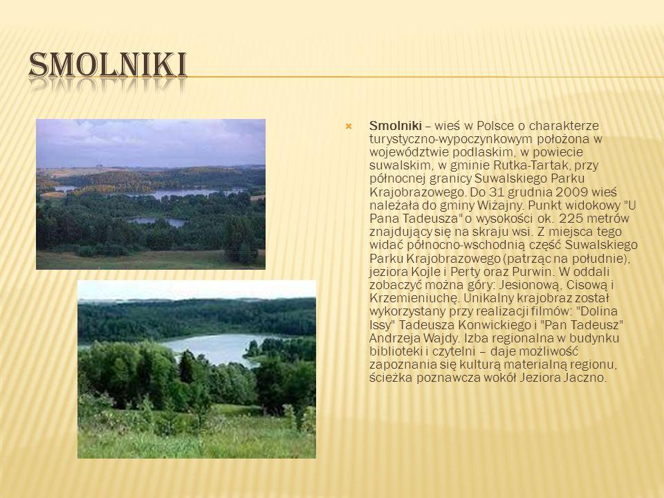 Smolniki – wieś w Polsce o charakterze turystyczno-wypoczynkowym położona w województwie podlaskim, w powiecie suwalskim, w gminie Rutka-Tartak, przy