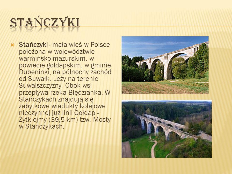 Stańczyki - mała wieś w Polsce położona w województwie warmińsko-mazurskim, w powiecie gołdapskim, w gminie Dubeninki, na północny zachód od Suwałk. L
