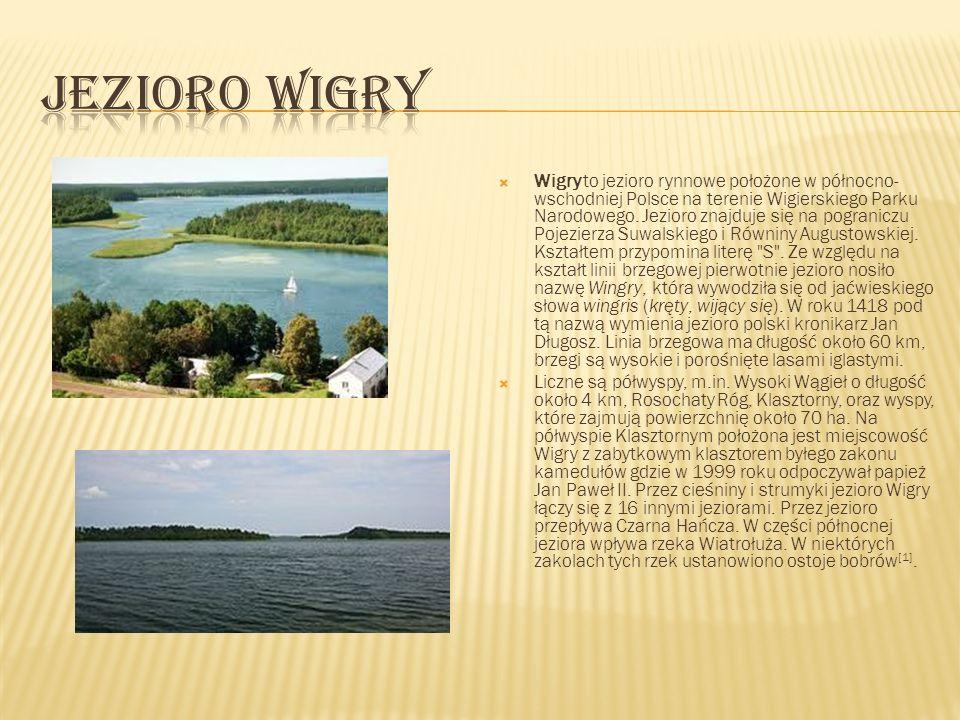 Wigry to jezioro rynnowe położone w północno- wschodniej Polsce na terenie Wigierskiego Parku Narodowego. Jezioro znajduje się na pograniczu Pojezierz