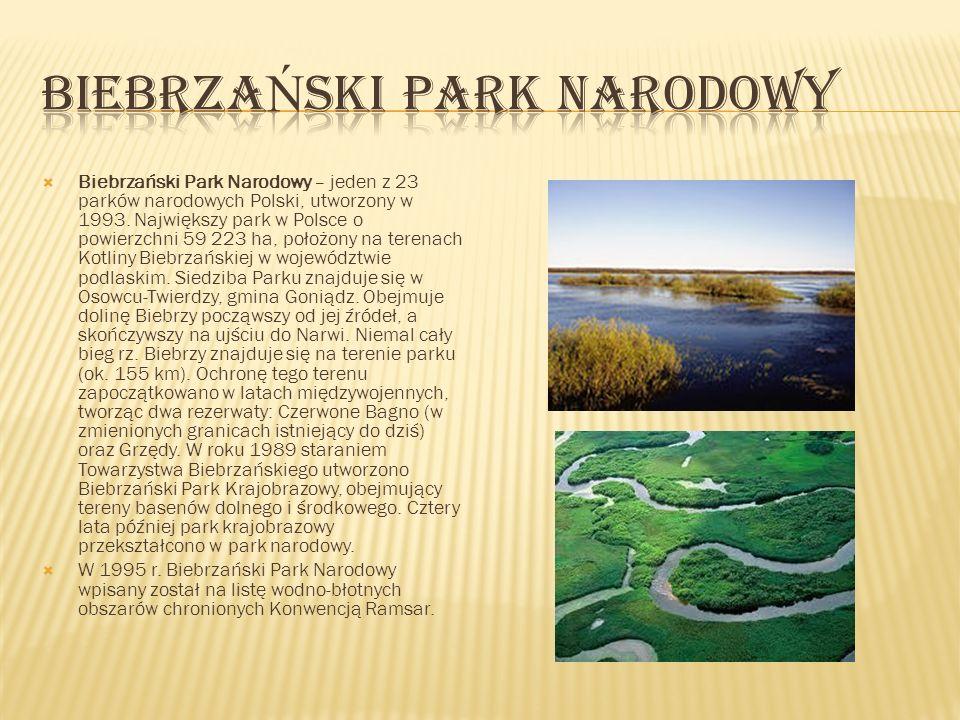 Biebrzański Park Narodowy – jeden z 23 parków narodowych Polski, utworzony w 1993. Największy park w Polsce o powierzchni 59 223 ha, położony na teren
